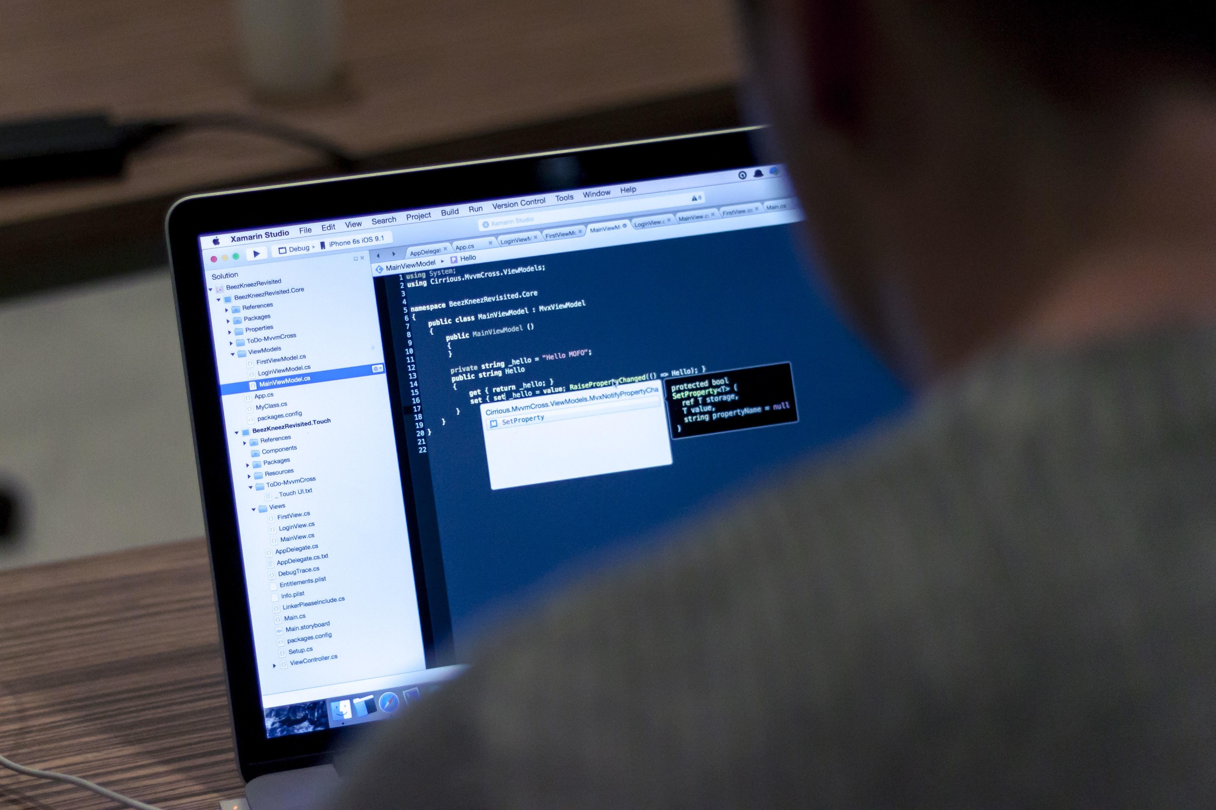 SAP Validierung: fehlerfreier arbeiten im ERP-System